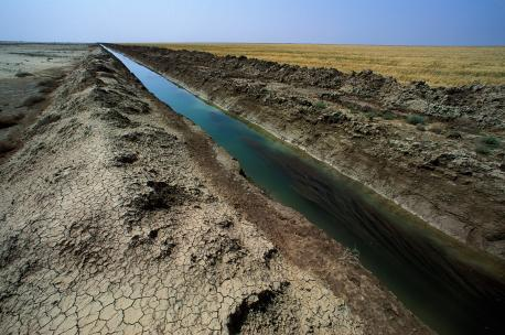 Irrigation canal near the town of Taweela in the Diyala Basin, Iraq, 1992. Source: Ed Kashi/VII.