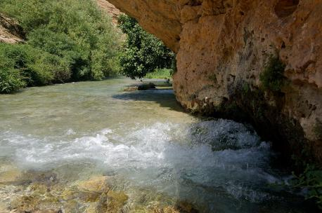Ain Zarqa Spring, the source of the Orontes, Lebanon, 2009. Source: Andreas Renck.