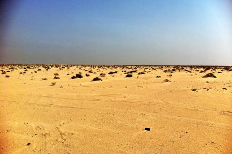 Desert near Basrah, Iraq, 2012. Source: Earth & Marine Environmental Consultants (EAME).