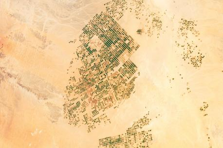 Agricultural fields in the Wadi Sirhan Basin, Saudi Arabia, 2012. Source: Expedition 30 Crew.