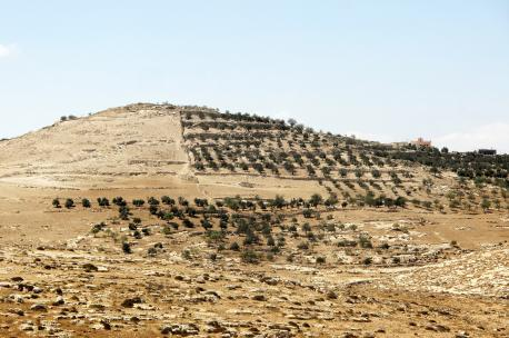 South Hebron Hills, West Bank, 2010. Source: Adam Groffman.