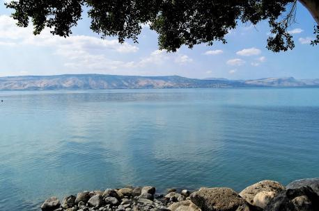 Lake Tiberias, Israel, 2010. Source Adam Groffman.