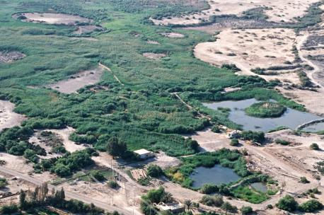 Azraq Oasis, Jordan, 1997. Source: David L. Kennedy, Aerial Photographic Archive for Archaeology in