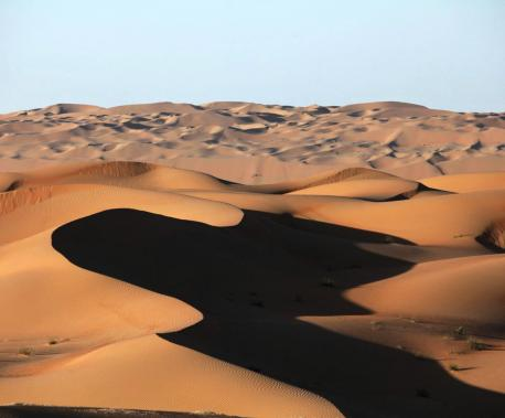 Liwa Oasis, Abu Dhabi, UAE, 2010. Source: Tom Olliver.