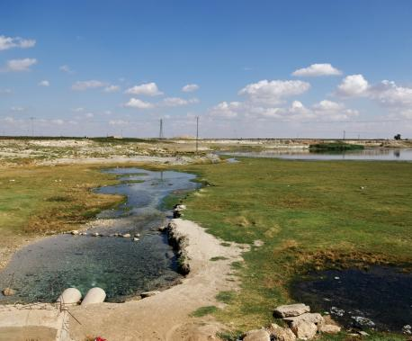 The spring of Ain al Arous, source of the Balikh River, Syria, 2010. Source: Andreas Renck.